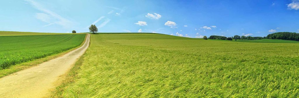 panorama-3629120_1920